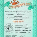 2006. 1 место в Международном математическом конкурсу «Кенгуру». Школьный этап