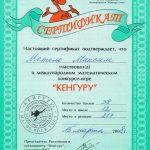 2008. Сертификат участника Международного математического конкурса «Кенгуру»