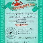 """2010. 2 место в Международном математической конкурсе """"Кенгуру"""". Школьный этап"""