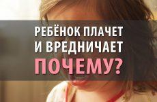 Ребёнок плачет и вредничает. Почему?